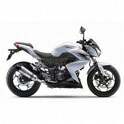 Escape Leovince LV EVO Carbono Kawasaki Z250 2015-2016 8740E