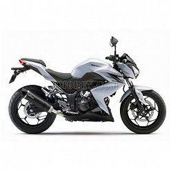 Escape Leovince LV EVO Carbono Kawasaki Z250 2015-2016 8741E