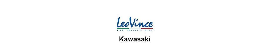 LeoVince Kawasaki