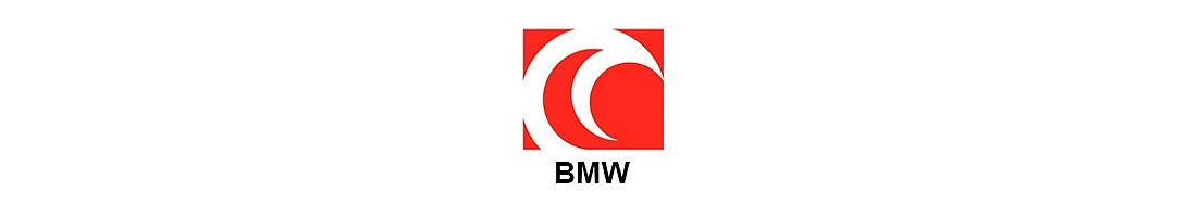Scorpion BMW