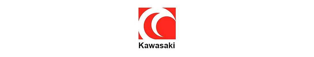 Scorpion Kawasaki