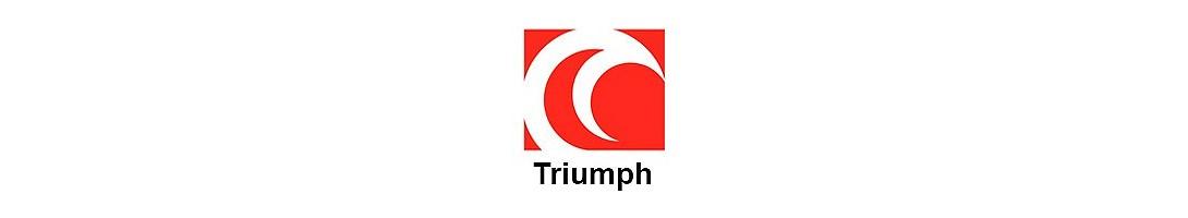 Scorpion Triumph