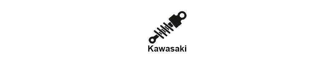 Amortiguacion moto Kawasaki