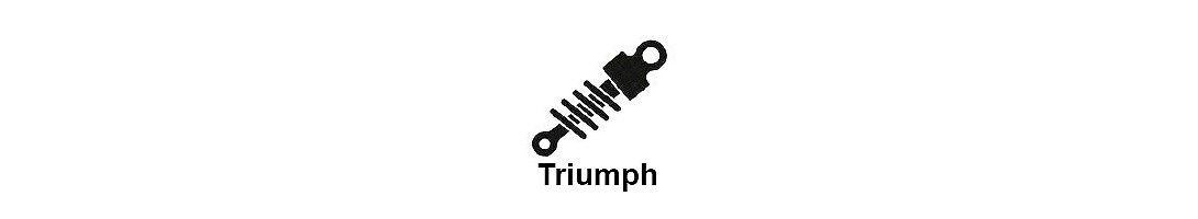 Amortiguacion moto Triumph
